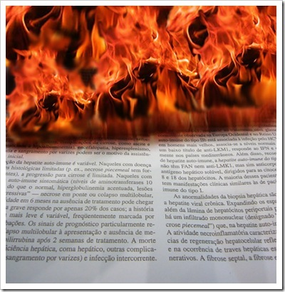 harry burn copy