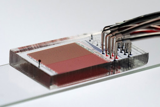 Lab-on-a Chip Expands Functional Studies of Enzyme Variants