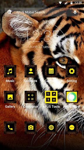 Tiger theme for APUS