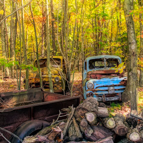 Parked by Sandy Considine - Transportation Automobiles ( fall colors, trucks, junk vehicles )