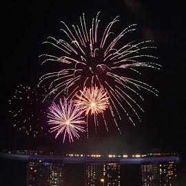 by Koh Chip Whye - Public Holidays New Year's Eve
