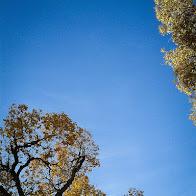 2012-10-20 09.37.09.JPG