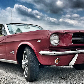 Going Topless! by Lorna Littrell - Transportation Automobiles ( mustang, old car, cars, old cars, antique, red cars,  )