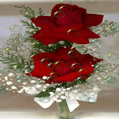 Red Roses Bubble LWP
