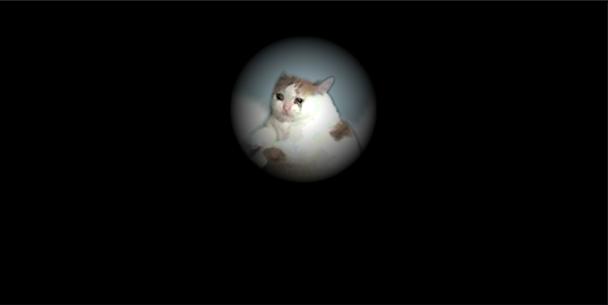 Becker cat's adventures 2
