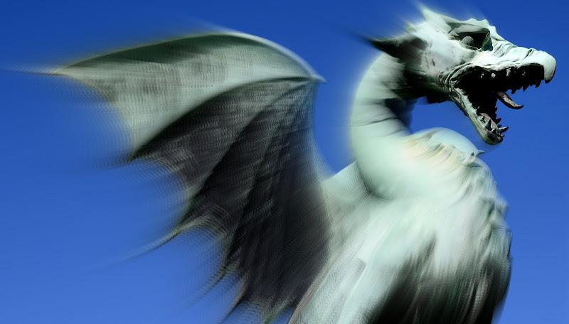 Dragon di robertodegni