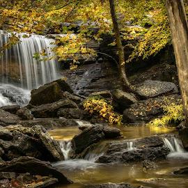 by Dana Johnson - Landscapes Waterscapes ( waterfalls, falls, waterscape, cascade, autumn, landscape )