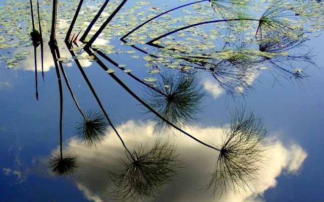 Clouds in the mirror di Anto