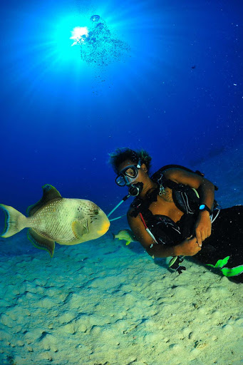 Tahiti-scuba-fish.jpg - Cruise to Tahiti to enjoy scuba diving in the warm waters of Polynesia.