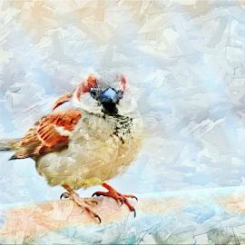 by Joyce Williams Carr - Digital Art Animals