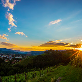 summer evening by Jernej Lipovec - Landscapes Sunsets & Sunrises ( warm, nature, sunset, summer, landscape, evening, sun, rays, city,  )