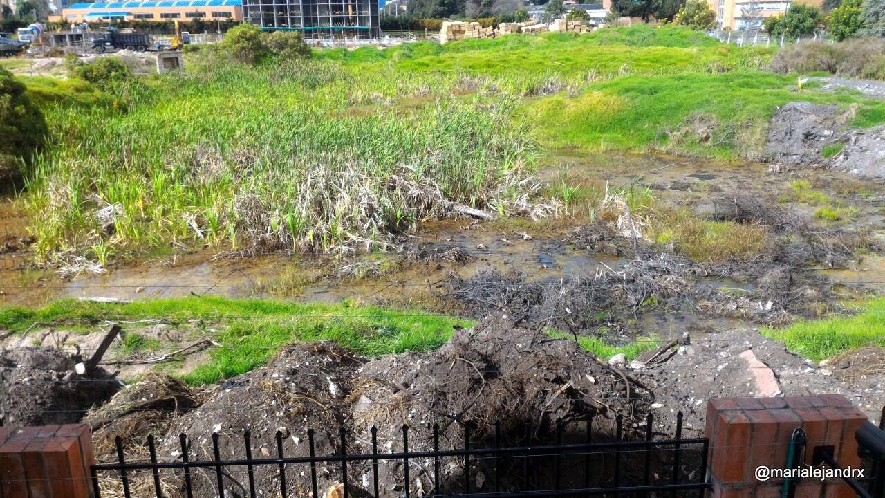 Cuerpon de agua ya deteriorado por rellenos y obras