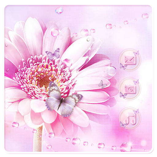 Daisy Butterfly Flower Pink Theme