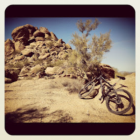 Mountain Bike by Amory Godwin Grijaldo - Instagram & Mobile Instagram