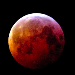 Total Eclipse Blood Moon taken at 5.am Monday 20/01/2019 by Richard Lawes - Novices Only Objects & Still Life