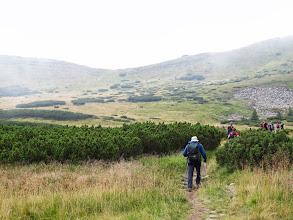 Photo: 23.W okolicach głównej grani Czarnohory.