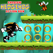 The Shadow Hedgehog Action Run
