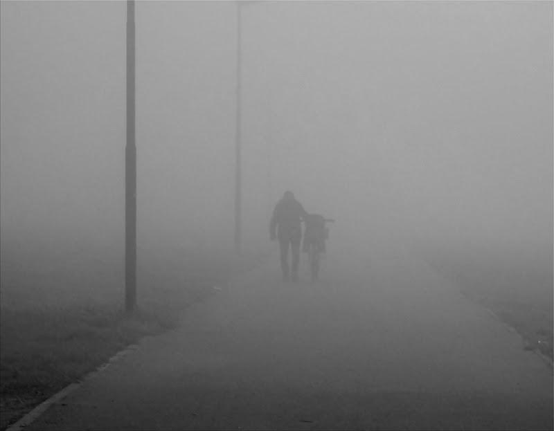 Passeggiando... Solo... Nella Nebbia!! di ayrton73