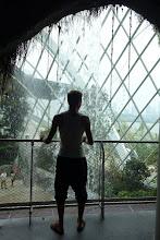 Photo: On peut visiter l'intérieur de la rain forest !