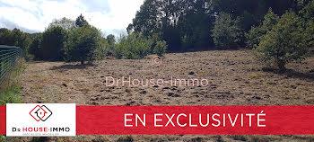 terrain à Sainte-Fortunade (19)