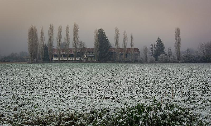 Il torpore invernale di IsideB