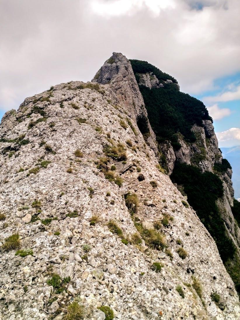 Colţul Gălbinele (Munţii Bucegi)