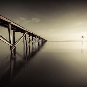 Don't Surrender by Johari Nasib - Landscapes Waterscapes ( monochrome, dreamscape, fine art, mood, minimalist )