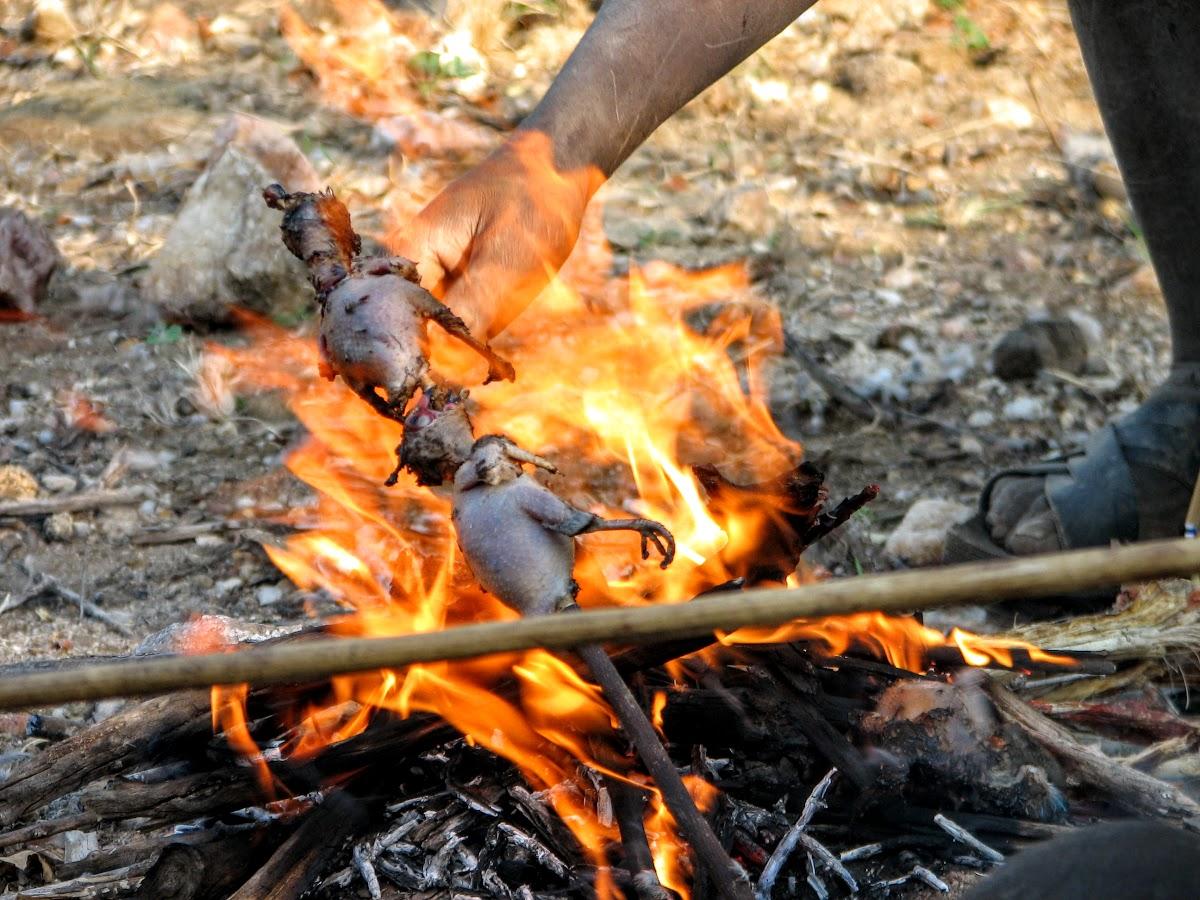Oiseaux de cuisson sur le feu