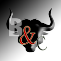 Bulls and Cows icon