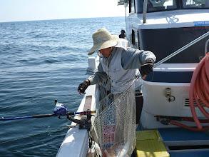Photo: この日一番の真鯛4kgでした!