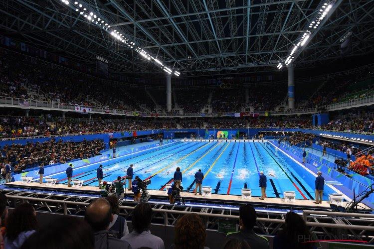 """Vlaamse Zwemfederatie heeft een nieuwe voorzitter: """"Ik wil mijn ervaring en passie ten dienste stellen"""""""