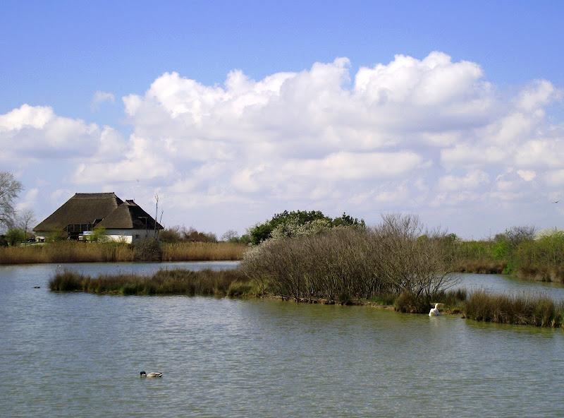 La laguna di Marano (UD) di Julia982