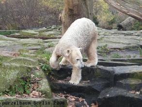 Photo: Wieder hinunter zum Wassergraben ?
