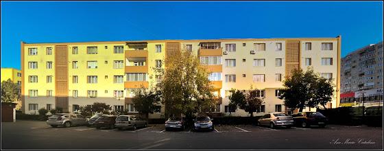 Photo: Calea Victoriei , Spatiu verde  intre blocurile cu Nr.9-11 - 2017.10.17
