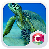 Sea Turtles CLauncher Theme