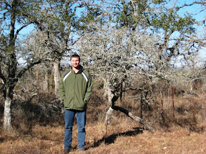 Photo: Our first stop in Blanco County brought us to Bamberger Ranch and our state champion Blanco Crabapple (Malus ioensis var. texana), measuring just 9 feet tall and 14 inches in circumference.
