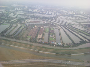 Photo: Pozemky kolem Bangkoku netrpí nouzí o vláhu.