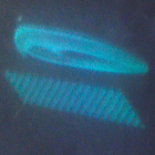Hologram  X icon