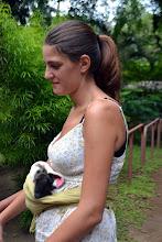 """Photo: Auch Affen werden hier aufgepeppelt und, wenn möglich, ausgewildert, wenn sie groß und fit sind. Die """"Affenmama"""" muss sich übrigens den ganzen Tag um das kleine kümmern, wie bei einem Menschenbaby eben — hier: Jaguar Rescue Center."""