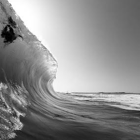 *** by Morgan Grosskreutz - Landscapes Waterscapes ( water, florida, wave, white, ocean, surf, black, and, shorebreak )