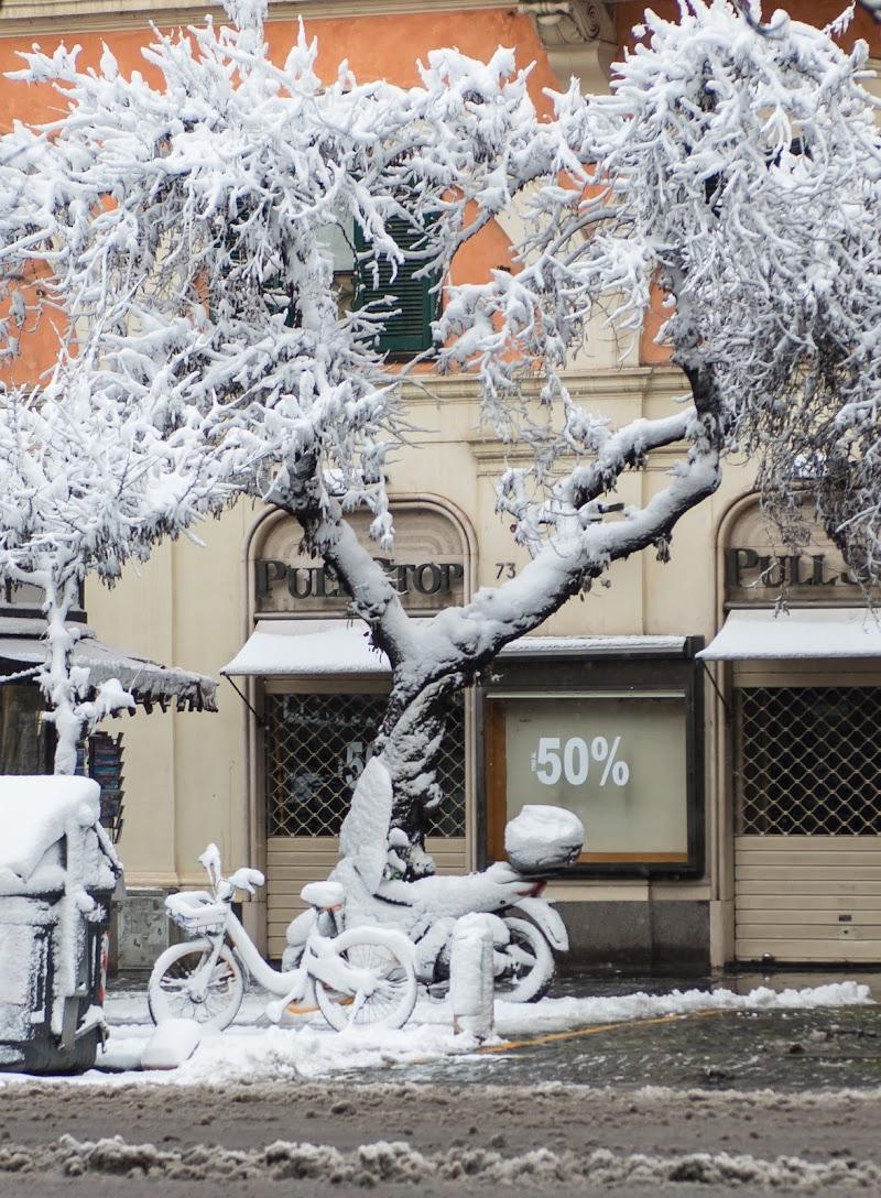 nevicata a Roma 2018 di walterferretti