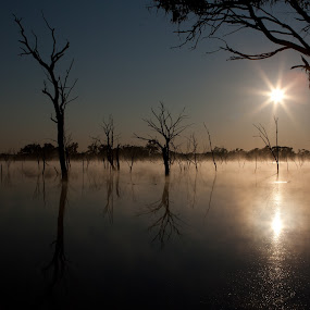 Dawn Mist by Gary Tindale - Landscapes Waterscapes ( dawn, lake, sunrise, mist )