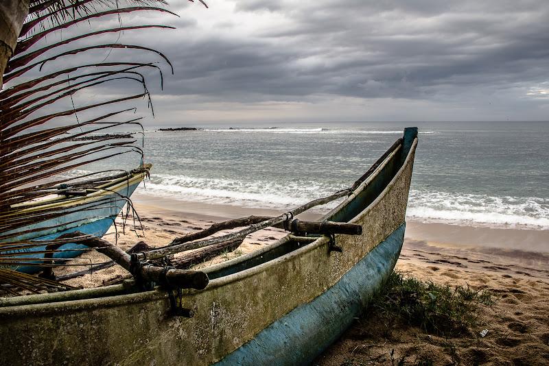 Dove  sono i pescatori? di Simona Ranieri