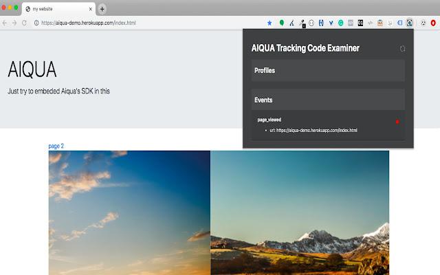 Tracking Code examiner