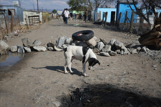 Nkaneng informal settlement in Marikana, North West. Picture: SOWETAN