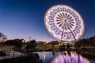 Photo: A giant ferris wheel at Kasai Rinkai Park in Tokyo