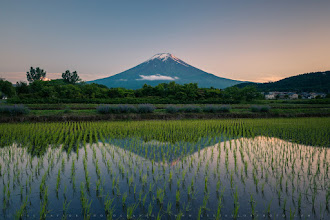 Photo: Mt Fuji Reflected In Rice Paddies  Earlier this month I took a trip to the Mt Fuji area, and before I left was able to meet up with +Yuga Kurita, who introduced me to this beautiful spot. With the rice just beginning to sprout from the water and a lightly snow-capped Fuji in the distance, to me it was quintessential Japan!  I also edited this photo only with Lightroom, and you can see the before and after comparison at my blog here:  http://lestaylorphoto.com/mt-fuji-reflected-rice-paddies/  #mountainmonday #japan #travel #landscapephotography