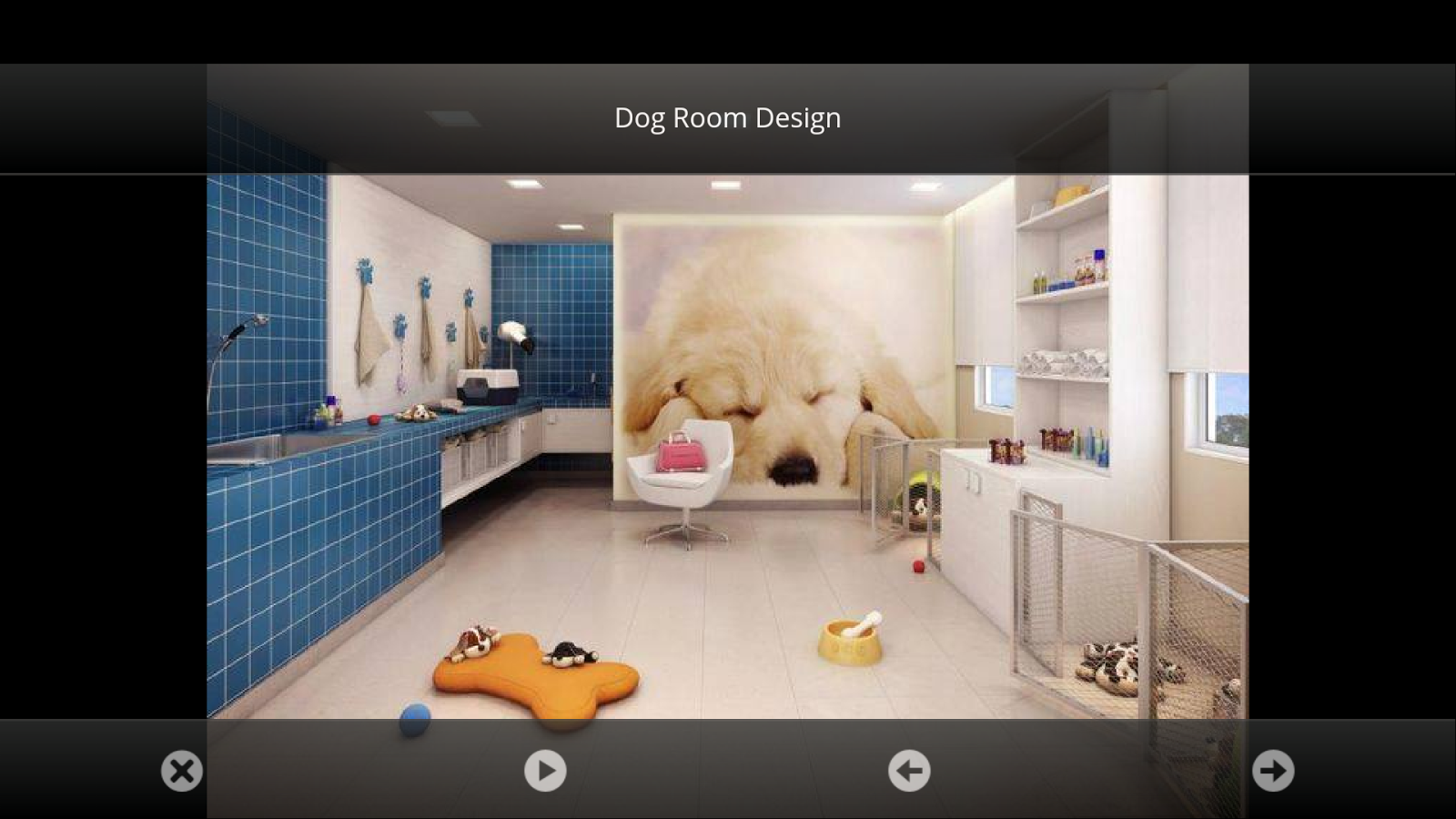 Dog Room Ideas - Android Apps on Google Play