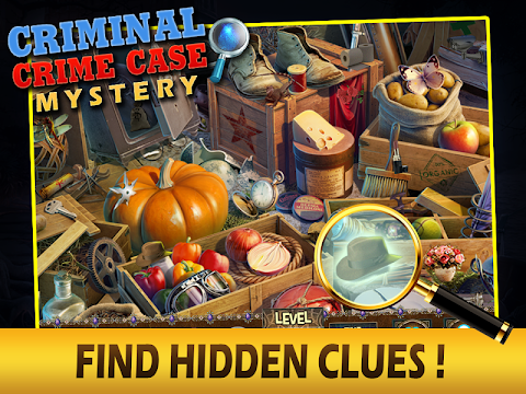 Criminal Crime Case Mystery - screenshot