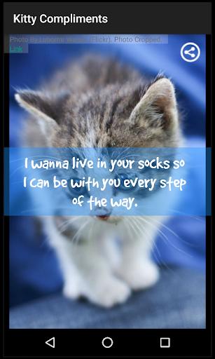 キティ賛辞|玩娛樂App免費|玩APPs